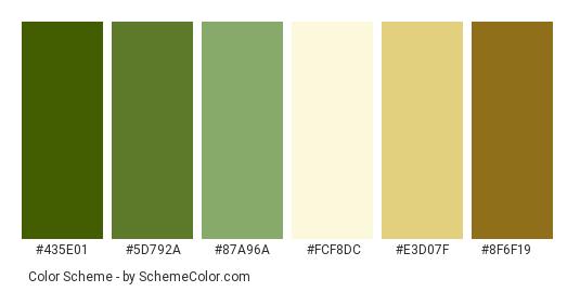 Asparagus Stems Color Scheme Image Schemecolor Com