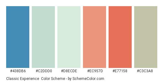 Classic Experience - Color scheme palette thumbnail - #438db6 #c2ddd0 #d8ecde #ec957d #e77158 #c3c3a8