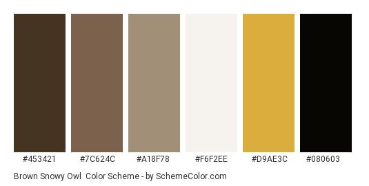 Brown Snowy Owl - Color scheme palette thumbnail - #453421 #7c624c #a18f78 #f6f2ee #d9ae3c #080603