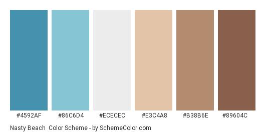 Nasty Beach - Color scheme palette thumbnail - #4592AF #86C6D4 #ECECEC #E3C4A8 #B38B6E #89604C