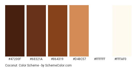 Coconut - Color scheme palette thumbnail - #47200F #68321A #864319 #D48C57 #FFFFFF #FFFAF0
