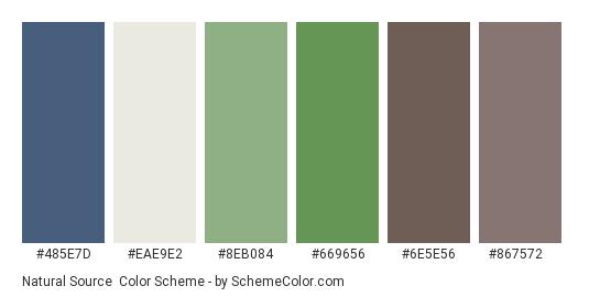 Natural Source - Color scheme palette thumbnail - #485e7d #eae9e2 #8eb084 #669656 #6e5e56 #867572