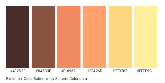 Evolution - Color scheme palette thumbnail - #492D29 #8A533F #F18962 #FFA26D #FFD782 #FFEE9C