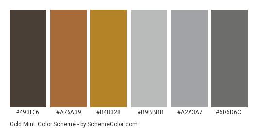 Gold Mint - Color scheme palette thumbnail - #493f36 #a76a39 #b48328 #b9bbbb #a2a3a7 #6d6d6c