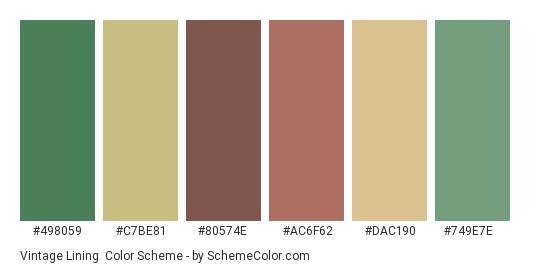 Vintage Lining - Color scheme palette thumbnail - #498059 #c7be81 #80574e #ac6f62 #dac190 #749e7e