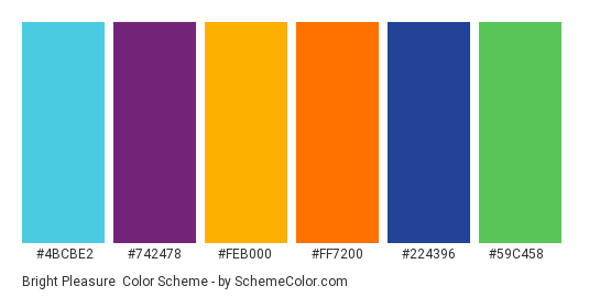 Bright Pleasure - Color scheme palette thumbnail - #4bcbe2 #742478 #feb000 #ff7200 #224396 #59c458