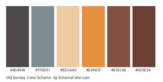 Old Sunday - Color scheme palette thumbnail - #4d4948 #7f8d91 #edcaa0 #e4903f #835140 #6d3e34