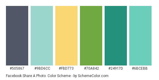 Facebook Share a Photo - Color scheme palette thumbnail - #505867 #9bd6cc #fbd773 #70a842 #24917d #6bcebb
