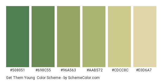 Get Them Young - Color scheme palette thumbnail - #508051 #698c55 #96a563 #aab572 #cdcc8c #e0d6a7