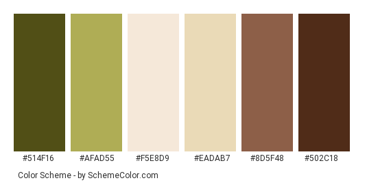 Matcha Tea Preparation - Color scheme palette thumbnail - #514f16 #afad55 #f5e8d9 #eadab7 #8d5f48 #502c18