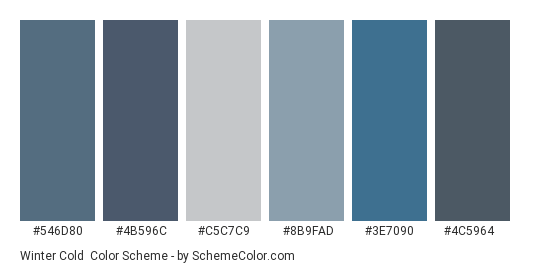 Winter Cold - Color scheme palette thumbnail - #546d80 #4b596c #c5c7c9 #8b9fad #3e7090 #4c5964