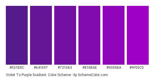 Violet to Purple Gradient - Color scheme palette thumbnail - #551b8c #641697 #7310a3 #810bae #9005ba #9f00c5