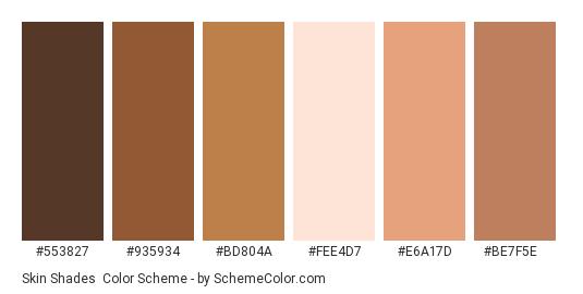 Skin Shades - Color scheme palette thumbnail - #553827 #935934 #bd804a #fee4d7 #e6a17d #be7f5e