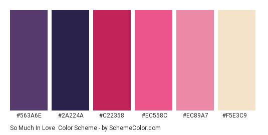 So Much In Love - Color scheme palette thumbnail - #563A6E #2A224A #C22358 #EC558C #EC89A7 #F5E3C9