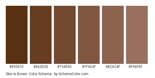 Skin is Brown - Color scheme palette thumbnail - #593010 #663D20 #734930 #7F563F #8C624F #996F5F