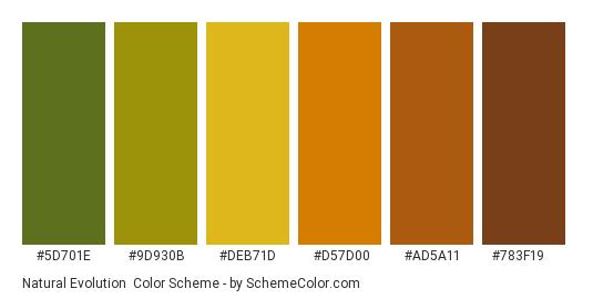 Natural Evolution - Color scheme palette thumbnail - #5D701E #9D930B #DEB71D #D57D00 #AD5A11 #783F19