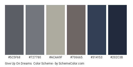 Give up on Dreams - Color scheme palette thumbnail - #5c5f68 #727780 #acaa9f #706665 #314153 #202c3b