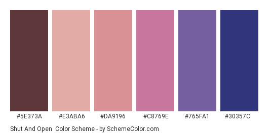 Shut and Open - Color scheme palette thumbnail - #5e373a #e3aba6 #da9196 #c8769e #765fa1 #30357c