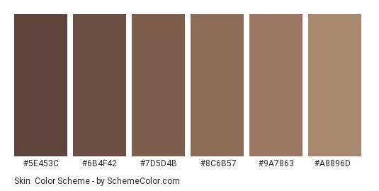 Skin - Color scheme palette thumbnail - #5e453c #6b4f42 #7D5D4B #8C6B57 #9A7863 #A8896D