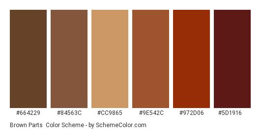 Brown Parts - Color scheme palette thumbnail - #664229 #84563c #cc9865 #9e542c #972d06 #5d1916