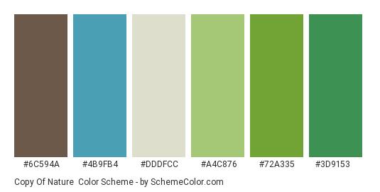 Copy of Nature - Color scheme palette thumbnail - #6c594a #4b9fb4 #dddfcc #a4c876 #72a335 #3d9153
