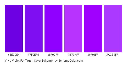 Vivid Violet for Trust - Color scheme palette thumbnail - #6e00e4 #7f0ef0 #8f00ff #B734FF #9F01FF #AC39FF