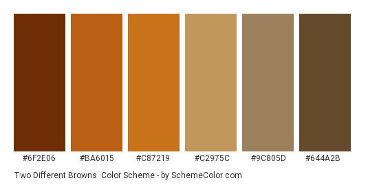 Two Different Browns - Color scheme palette thumbnail - #6f2e06 #ba6015 #c87219 #c2975c #9c805d #644a2b