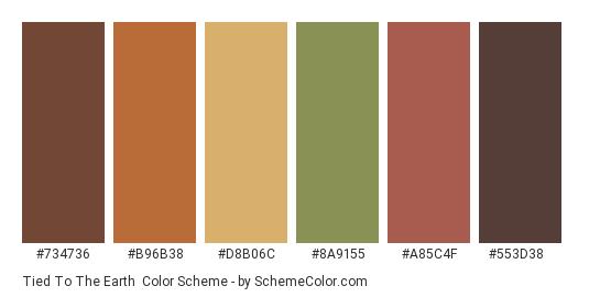 Tied to the Earth - Color scheme palette thumbnail - #734736 #b96b38 #d8b06c #8a9155 #a85c4f #553d38