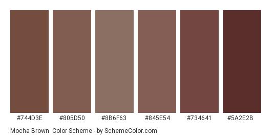 Mocha Brown - Color scheme palette thumbnail - #744d3e #805d50 #8b6f63 #845e54 #734641 #5a2e2b