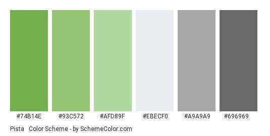 Pista & Gray - Color scheme palette thumbnail - #74b14e #93c572 #afd89f #ebecf0 #a9a9a9 #696969