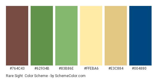 Rare Sight - Color scheme palette thumbnail - #764c43 #62934b #83b86e #ffeba6 #e3c884 #004880