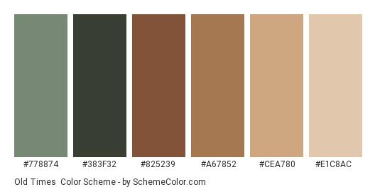 Old Times - Color scheme palette thumbnail - #778874 #383F32 #825239 #A67852 #CEA780 #E1C8AC