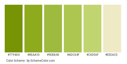 Green Inside Of Kiwi Color Scheme Palette Thumbnail 779404 8eaa1d 9ebb40