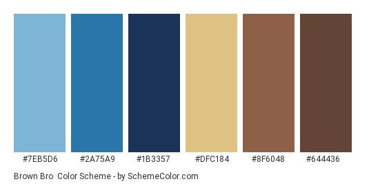 Brown Bro - Color scheme palette thumbnail - #7eb5d6 #2a75a9 #1B3357 #dfc184 #8f6048 #644436