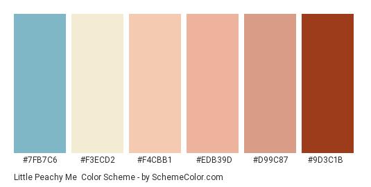 Little Peachy Me - Color scheme palette thumbnail - #7fb7c6 #f3ecd2 #f4cbb1 #edb39d #d99c87 #9d3c1b