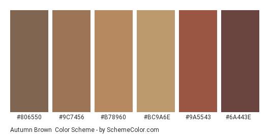 Autumn Brown - Color scheme palette thumbnail - #806550 #9c7456 #b78960 #bc9a6e #9a5543 #6a443e