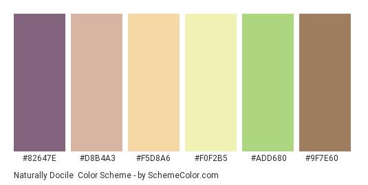Naturally Docile - Color scheme palette thumbnail - #82647e #d8b4a3 #f5d8a6 #f0f2b5 #add680 #9f7e60