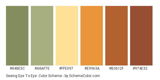 Seeing Eye to Eye - Color scheme palette thumbnail - #848E5C #A8AF7E #FFE097 #E9963A #B3612F #974E32