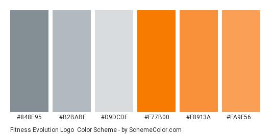 Fitness Evolution Logo - Color scheme palette thumbnail - #848e95 #b2babf #d9dcde #f77b00 #f8913a #fa9f56