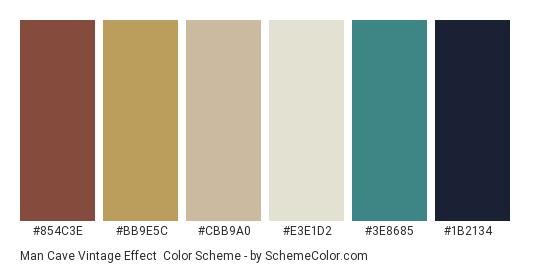 Man Cave Vintage Effect - Color scheme palette thumbnail - #854c3e #bb9e5c #cbb9a0 #e3e1d2 #3e8685 #1b2134