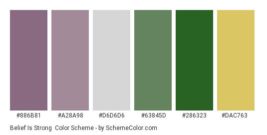 Belief is Strong - Color scheme palette thumbnail - #886b81 #a28a98 #d6d6d6 #63845d #286323 #dac763