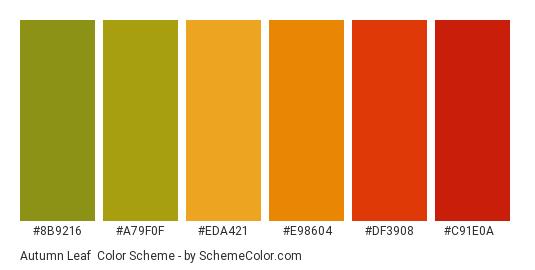 Autumn Leaf - Color scheme palette thumbnail - #8b9216 #a79f0f #eda421 #e98604 #df3908 #c91e0a