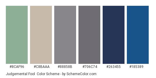 Judgemental Fool - Color scheme palette thumbnail - #8caf96 #c8baaa #88858b #706c74 #263455 #185389