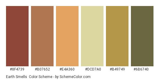 Earth Smells - Color scheme palette thumbnail - #8f4739 #b07652 #e4a360 #dcd7a0 #b49749 #6b6740