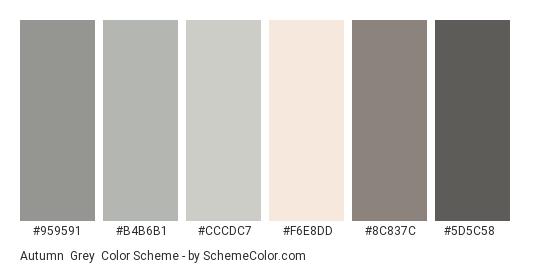 Autumn  Grey - Color scheme palette thumbnail - #959591 #b4b6b1 #cccdc7 #f6e8dd #8c837c #5d5c58