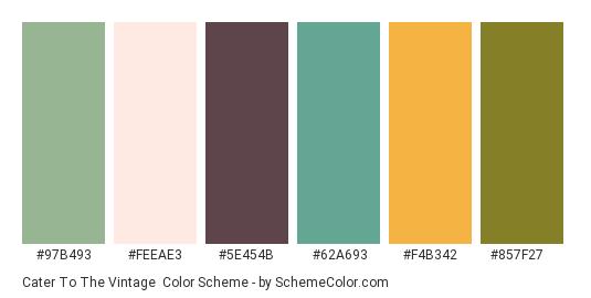 Cater to the Vintage - Color scheme palette thumbnail - #97b493 #feeae3 #5e454b #62a693 #f4b342 #857f27