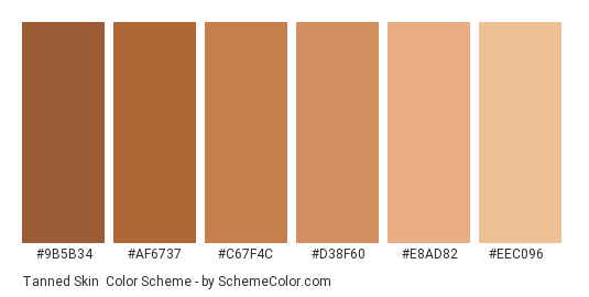 Tanned Skin - Color scheme palette thumbnail - #9b5b34 #af6737 #c67f4c #d38f60 #e8ad82 #eec096