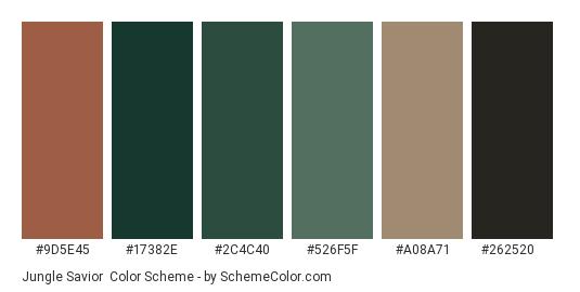 Jungle Savior - Color scheme palette thumbnail - #9d5e45 #17382e #2c4c40 #526f5f #a08a71 #262520