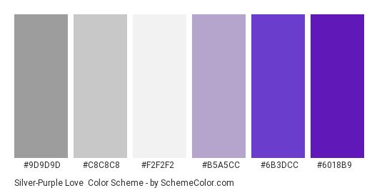 Silver-Purple Love - Color scheme palette thumbnail - #9d9d9d #c8c8c8 #f2f2f2 #b5a5cc #6b3dcc #6018b9