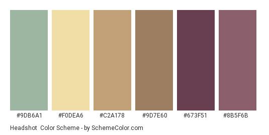 Headshot - Color scheme palette thumbnail - #9db6a1 #f0dea6 #c2a178 #9d7e60 #673f51 #8b5f6b